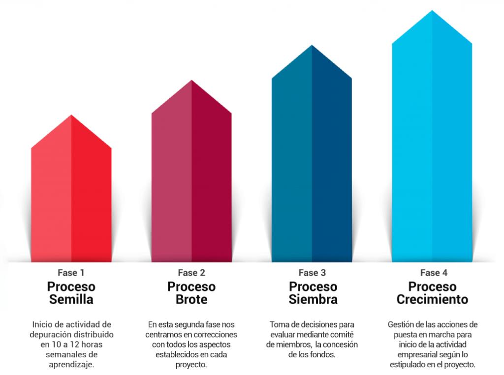 Crecimiento-empresarial-Procesos-de-empresas-impulsa-consulting